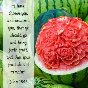 John 15-16 English