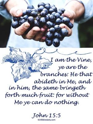 John 15-5 KJV