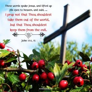 John 17-1, 15 KJV