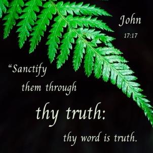 John 17-17 English