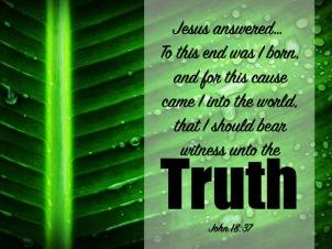 John 18-37 English