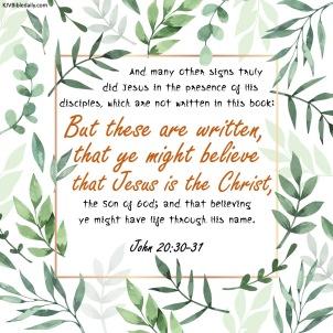 John 20-30-31 KJV