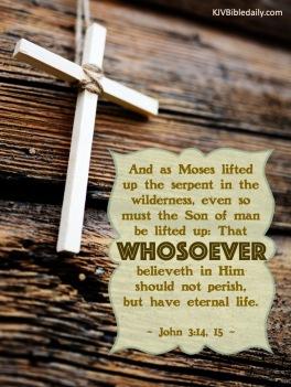 John 3-14, 15 KJV
