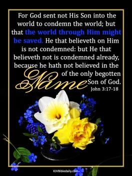 John 3-17, 18 KJV
