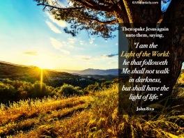 John 8-12 KJV