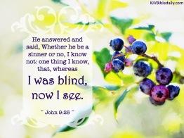 John 9-25 KJV