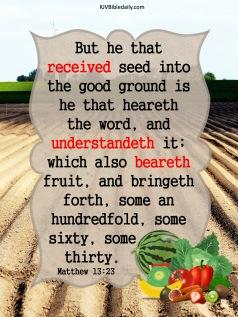 Matthew 13 23 KJV