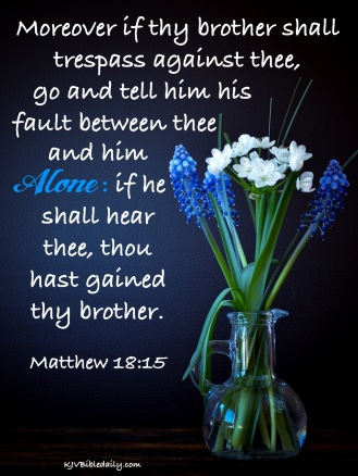 Matthew 18-15 KJV