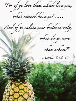 Matthew 5 46-47 English