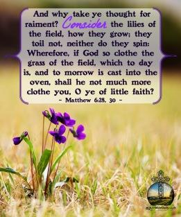 Matthew 6 18-20 KJV