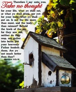 Matthew 6-25-26 KJV