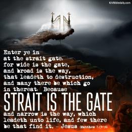Matthew 7 13-14 KJV