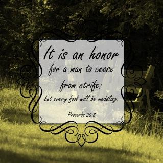 Proverbs 20 3 English