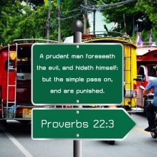 Proverbs 22 3