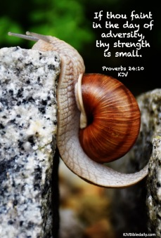 Proverbs 24 10 KJV