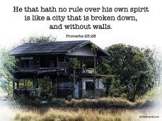 Proverbs 25 28 KJV