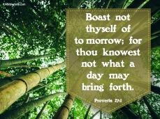 Proverbs 27 1 KJV
