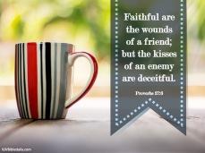 Proverbs 27 6 KJV