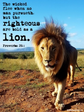 Proverbs 28-1 KJV
