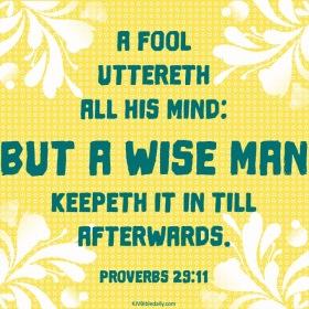 Proverbs 29-11 KJV
