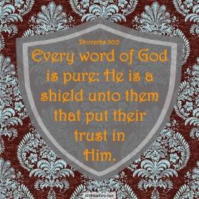Proverbs 30-5 KJV