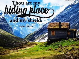 Psalm 119 114 KJV