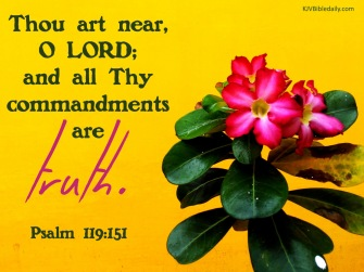 Psalm 119 151 KJV