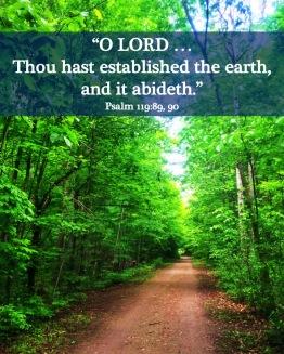 Psalm 119 90 English