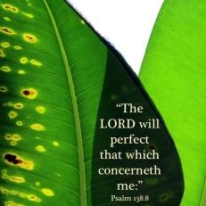 Psalm 138-8 English