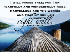 Psalm 139 14 KJV