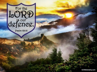 Psalm 89-18 KJV