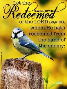 Psalms 107-2 KJV