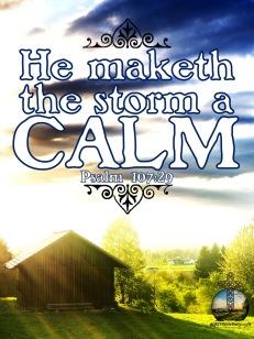 Psalms 107-29 KJV