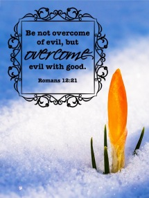 Romans 12 21 English