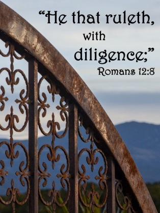 Romans 12 8.2 English