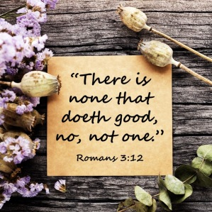 Romans 3-12 English