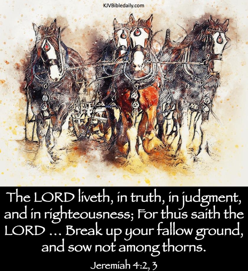 Jeremiah 4-2, 3 KJV