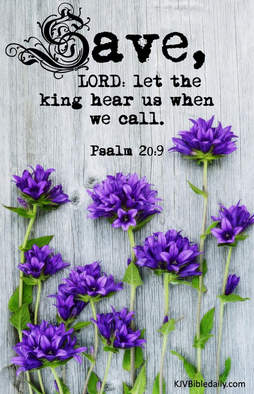 Psalm 10-9 KJV