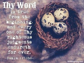 Psalm 119-160 KJV