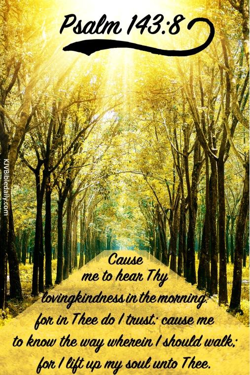 Psalm 143 8 KJV