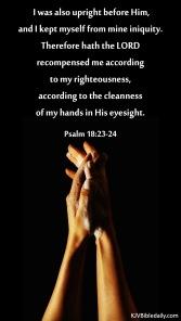 Psalm 18 23-24 KJV