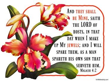 Malachi 4-2 KJV