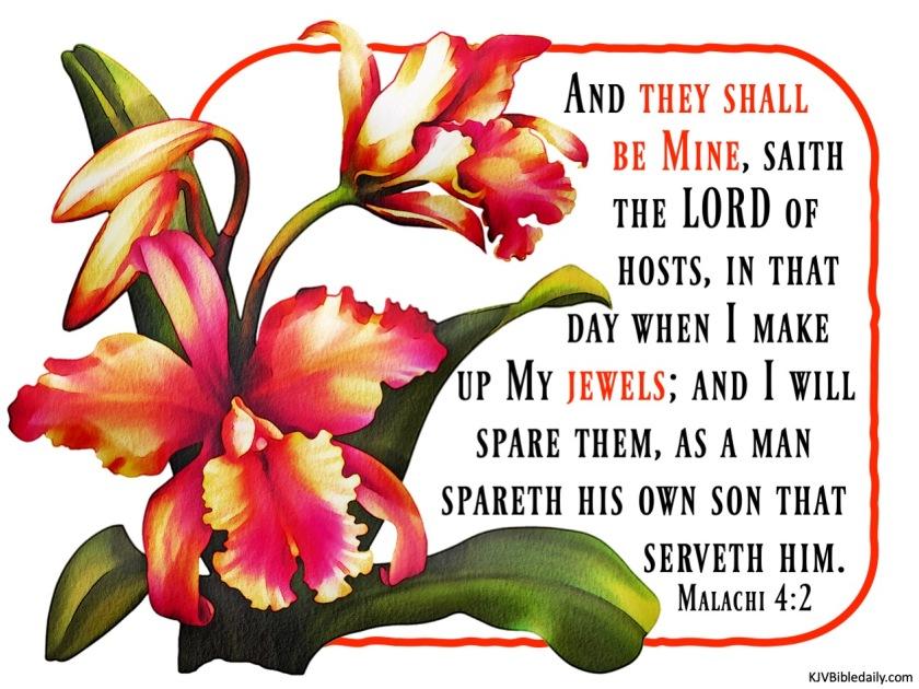 Malachi 4-2 KJV.jpg