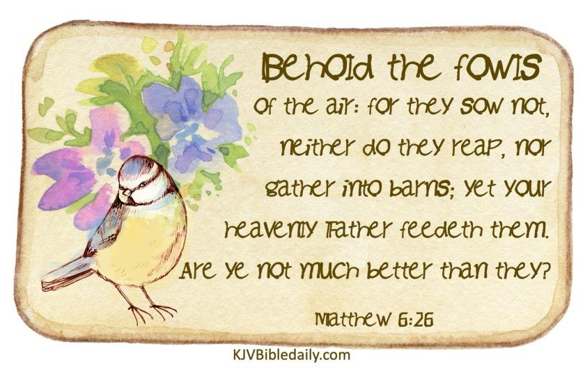 Matthew 6-26 KJV.jpg