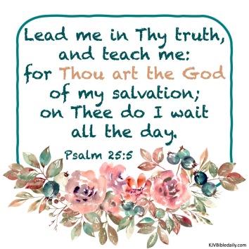 Psalm 25 5 KJV