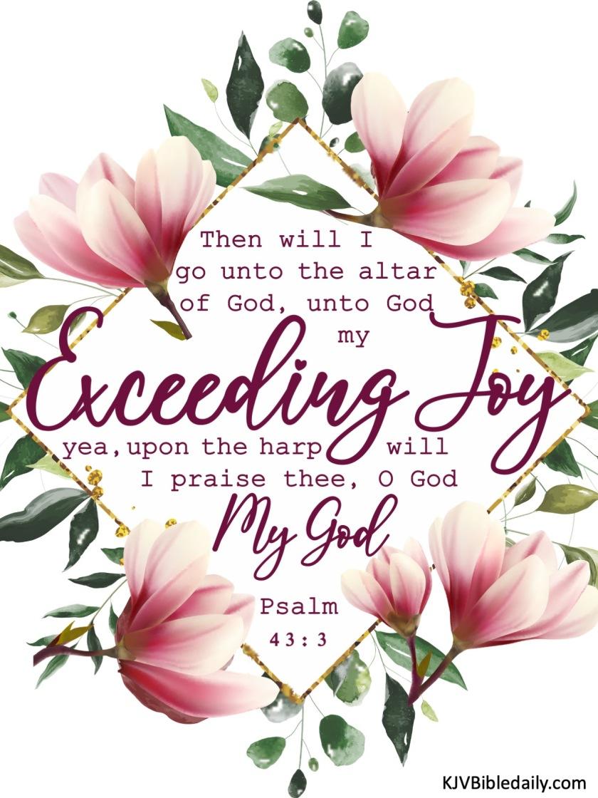 Psalm 43-3 KJV.jpg